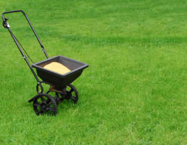 Canva-Lawn-seed-spreader-in-middle-of-bright-green-lawn