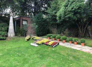 Garden-13