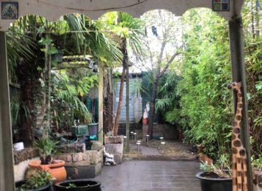 Garden-73